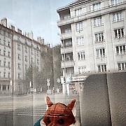 Zizkov#1. #prag #praha #prague #czechrepublic #window #fox #reflection #street #architecture #public