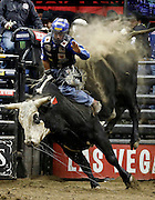 Kaique Pacheco of Brazil rides Moto Moto  during the Professional Bull Riders, Built Ford Tough Series at the Sprint Center, Saturday, Feb. 11, 2017, in Kansas City, Mo. (AP Photo/Colin E. Braley)