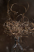 autumn season twisted twigs floral bouquet composite