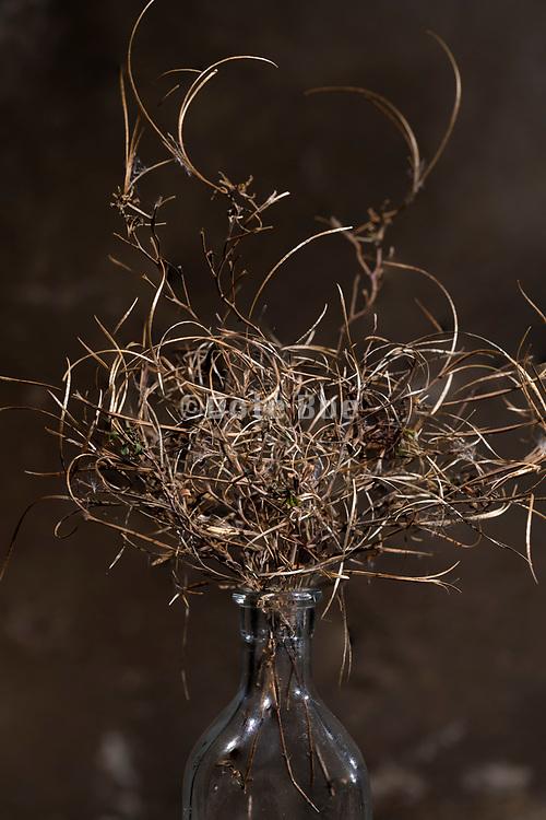 autumn season twisted twigs floral bouquet composite