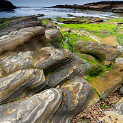 The Pacific Ocean forms honeycomb weathering in sandstone on the shoreline of Point Lobos State Reserve in California.