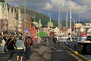 Sailing yachts and historic buildings evening light, Vagen harbour, Bergen, Norway