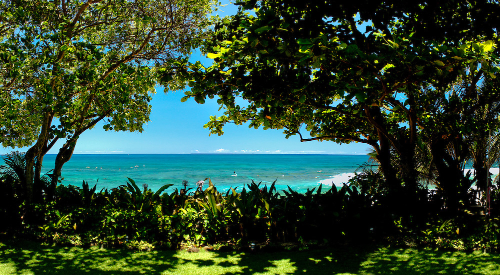 Trees frame the ocean and surf on Oahu's north shore, Hawaii