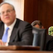 A protester dressed as a swamp creature is seen during the confirmation hearing of Interior secretary nominee David Bernhardt on Thursday, March 28, 2019.