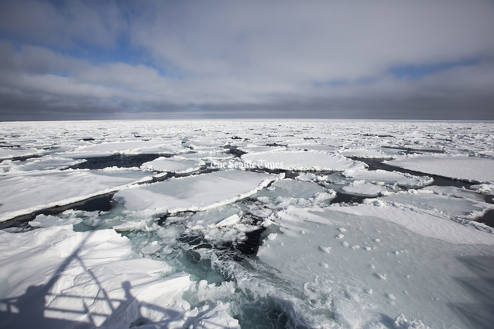 A 20-mile-long mass of sea ice drifts over the Bering Sea fishing grounds, covering buoys that mark the location of crab traps. Ice can seize the buoys and drag crab pots for miles, making it difficult for fishermen to find their gear. (Steve Ringman / The Seattle Times)