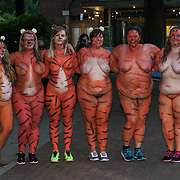 Around two hundreds Brave runners are getting ready to drop everything and Streak for Tigers around ZSL London Zoo in a bid to raise money for ZSL's tiger conservation projects On Thursday 10 August fearless fundraisers will be unleashing their inner animals and running as nature intended around the heart of ZSL London Zoo raising much needed funds for the international wildlife conservation charity.