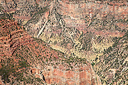 Bright Angel Canyon from the north rim of Grand Canyon National Park, Arizona