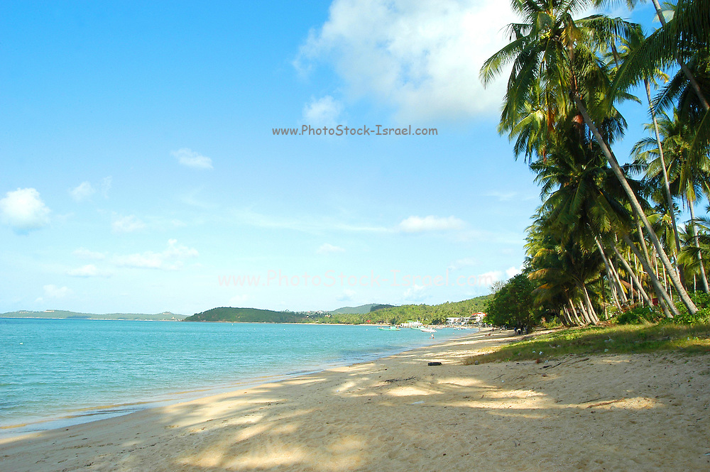 The beach at Ko Samui