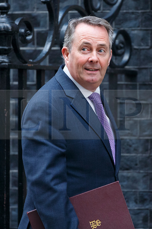 © Licensed to London News Pictures. 17/01/2017. London, UK. International Trade Secretary LIAM FOX attends a cabinet meeting in Downing Street on Tuesday, 17 January 2017 before Prime Minister Theresa May's Brexit plan speech. Photo credit: Tolga Akmen/LNP