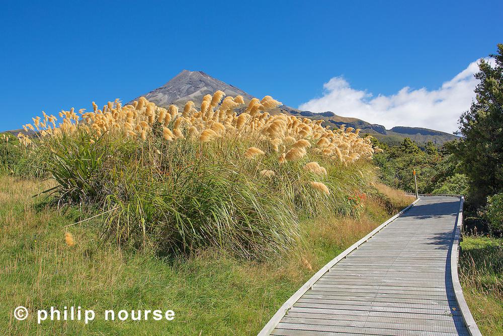 Mount Taranaki (Mount Egmont), Taranaki, North Island, New Zealand