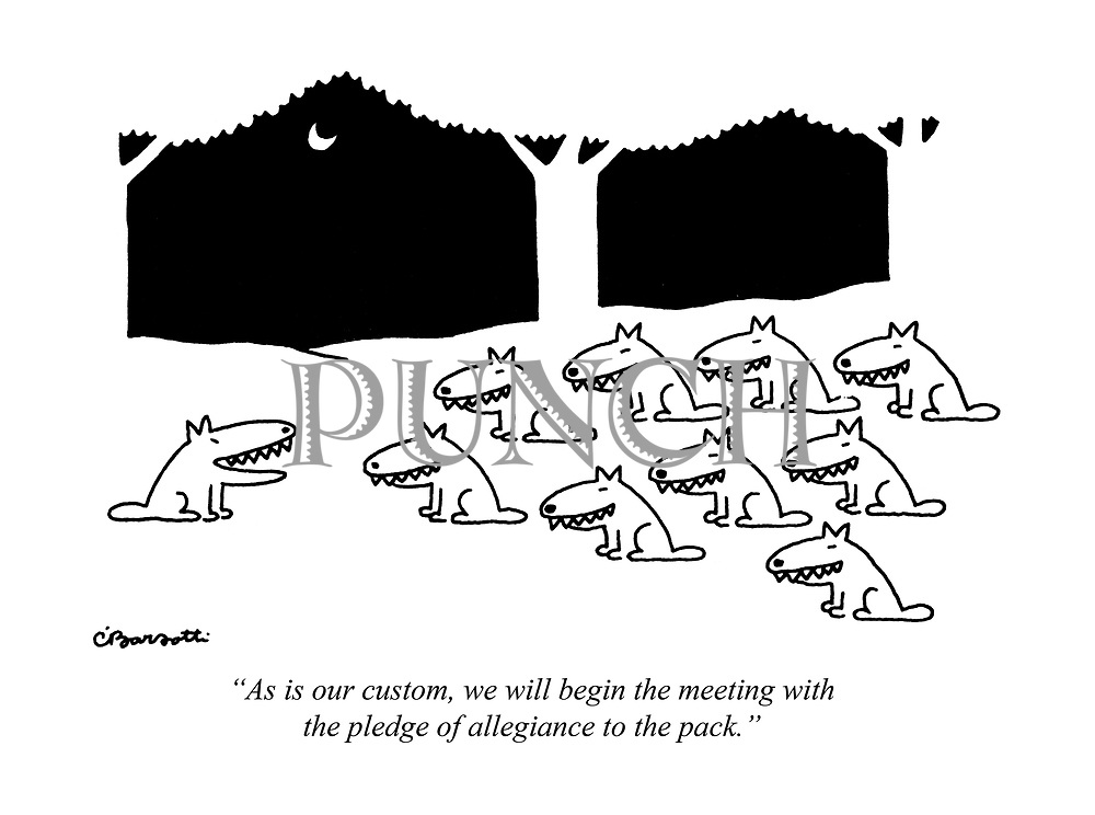 """""""As is our custom, we will begin the meeting with the pledge of allegiance to the pack."""""""