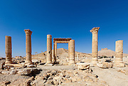 Camp of Diocletian. Palmyra, Syria. Ancient city in the desert that fell into disuse after the 16th century.