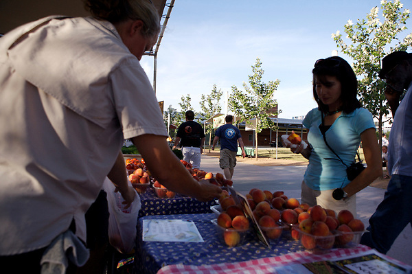 Stock photo of a woman sampling peaches at the organic market in the park