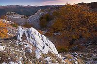 "Sunrise over the Crovu Mare (""Big Valley"") with the ridges of Domogled Valea Cernei National Park (left) and Godeanu mountains (far right) at the horizon. Mehedinti Plateau Geopark, Geoparcul Platoul Mehedinți, Romania."