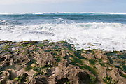 The rocky shore of Turtle Bay on the North Shore of Oahu.