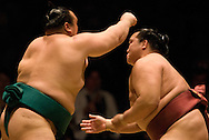 Iwakiyama (left) and Kisenosato compete in the second round of Day 2 of Grand Sumo Tournament Los Angeles 2008, Los Angeles Sports Arena, Los Angeles, California
