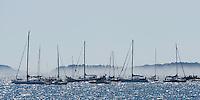 Sailboat race on the midsummer day in the Kanholmsfjärden.<br /> Stockholm Archipelago, Sweden