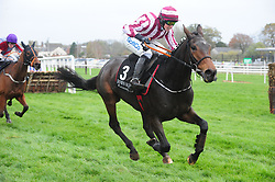 Coeur Sublime and jockey Bryan Cooper win the Value Cabs 3-Y-O Hurdle during day two of the Down Royal Festival.