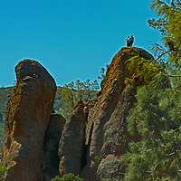 A hiker stands atop a rock tower above the Moses Spring Trail in Pinnacles National Monument, San Benito County, California.