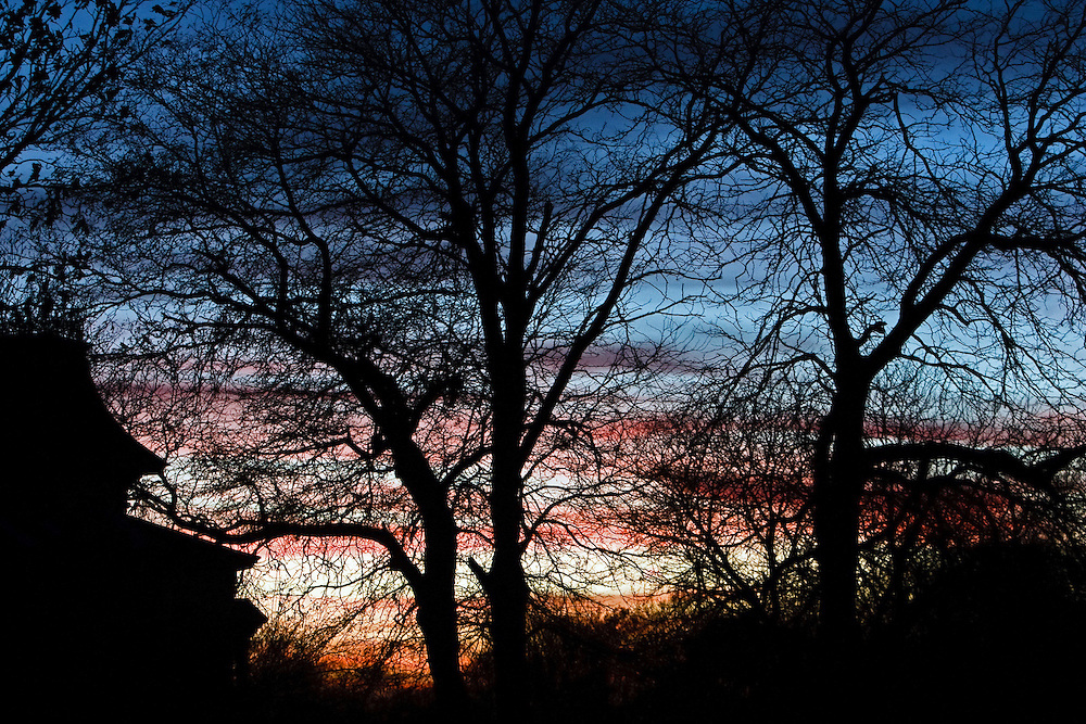 The sun sets behind nearly leafless tress Friday during All Hallows Eve at the Stuhr Museum in Grand Island.