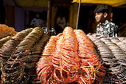 A young man is standing by his bracelets stall at a local street market in Firozabad, renowned as the 'glass city', Uttar Pradesh, northern India. Due to extreme poverty, over 20.000 young children are employed to complete the bracelets produced in the industrial units. This area is considered to be one of the highest concentrations of child labour on the planet. Forced to work to support their disadvantaged families, children as young as five are paid between 30-40 Indian Rupees (approx. 0.50 EUR) for eight or more hours of work daily. Most of these children are not able to receive an education and are easily prey of the labour-poverty cycle which has already enslaved their families to a life of exploitation. Children have to sit in crouched positions, use solvents, glues, kerosene and various other dangerous materials while breathing toxic fumes and spending most time of the day in dark, harmful environments. As for India's Child Labour Act of 1986, children under 14 are banned from working in industries deemed 'hazardous' but the rules are widely flouted, and prosecutions, when they happen at all, get bogged down in courts for lengthy periods. A ban on child labour without creating alternative opportunities for the local population is the central problem to the Indian Government's approach to the social issue affecting over 50 million children nationwide.