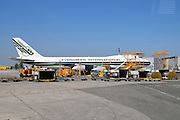 Israel, Ben-Gurion international Airport Evergreen International Passenger Jet on the ground
