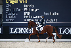Lundholm Ida-Linn, SWE, Dragon Welt 1303<br /> Longines FEI/WBFSH World Breeding Dressage Championships for Young Horses - Ermelo 2017<br /> © Hippo Foto - Dirk Caremans<br /> 04/08/2017