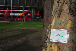 London, UK. 13th January, 2018. A sign on a tree in Euston Square Gardens indicates that it will not be felled for the HS2 high-speed rail link. Activists opposed to the controversial project have 'yarn-bombed' many of the mature London Plane, Red Oak, Common Whitebeam, Common Lime and Wild Service trees in Euston Square Gardens expected to be felled to make way for temporary sites for construction vehicles and a displaced taxi rank in order to draw attention to their fate.