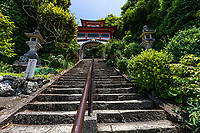 """Shinshoji Temple Gate - Shinshoji is the 25thtemple on the Shikoku Pilgrimageand is one of the smallest of all the temples.  The temple is located near the tip of the Muroto Peninsular that projects out into the Pacific Ocean and overlooks the fishing harbor of Muroto. Thus local people refer to the temple as """"Tsudera"""" or Port Temple. - The temple's name means """"Temple of the Illuminating Seaport"""".  The main hall is up a long flight of steep stairs but from it there is a great view over the area. Halfway up is a Chinese-style bell tower"""