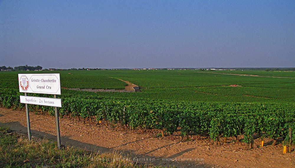 Sign and Grand Cru vineyard Griotte Chambertin, 2.6 hectares. Chapelle Chambertin to the left