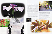 Columns Magazine: A Gift of Nature (September 2009)