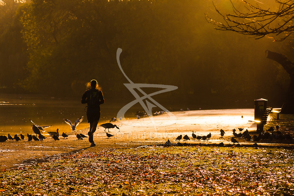 Regent's Park, London, November 4th 2014. A runner heads towards the rising sun on London's Regents Park.