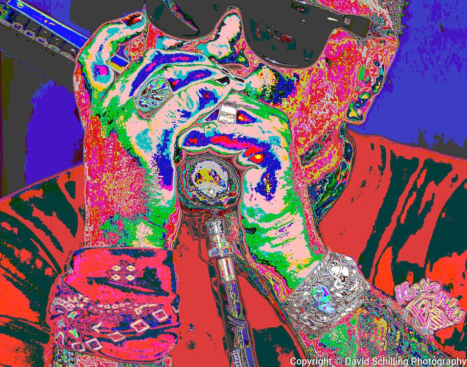 Blues singer & harmonica player