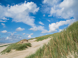 Duinen van Heemskerk, Noord Holland, Netherlands