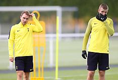 Tottenham Hotspur Training Session - 31 October 2017