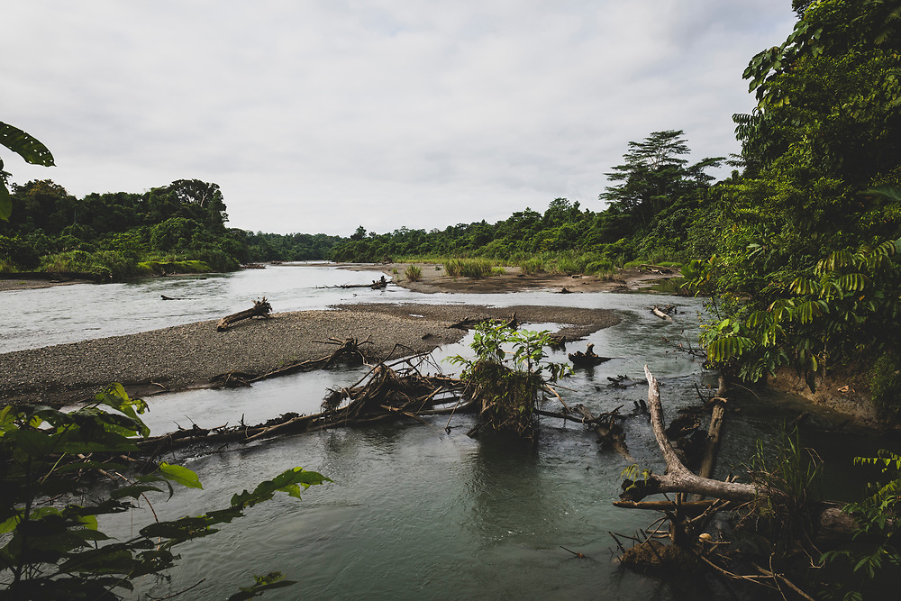 The Clay River, seen during the hike to the A-20 Havoc crash site an hour's walk from Likan in East Sepik Province. The Clay River is a tributary of the Keram River, which is a tributary of the Sepik River.