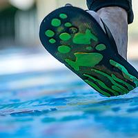 Wingtip Press. - Paint Boise River