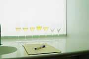Analytical wine tasting in a neutral white environment a white desk a sink and a backlit white screen with a line of champagne glasses some of the filled with wine and a note pad and pen for taking notes comments about the wines at the Maison de la Champagne (the House of the Champagne Region), the head quarters of CIVC (Comite Interprofessionnel du Vin de Champagne) in Epernay, Champagne, Marne, Ardennes, France