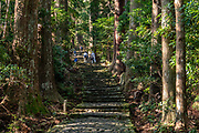 """Ancient trees on a Kumano Kodo pilgrimage route. Kumano Nachi Taisha shrine was built in homage to Nachi-no-Taki waterfall's kami (spirit god). Don't miss the iconic view of thundering Nachi-no-Taki waterfall (133m, Japan's tallest) paired with Seigantoji pagoda, in Nachikatsuura, Higashimuro District, Wakayama Prefecture, Japan. Kumano Nachi Taisha shrine fuses Buddhist and Shinto influences along the 1000+ year pilgrimage routes of Kumano Kodo. The """"Sacred Sites and Pilgrimage Routes in the Kii Mountain Range"""" form an impressive entry on UNESCO's List of World Heritage Sites. Access: by bus from Nachi Station (20 min) or Kii-Katsuura Station (30 min). Ask driver to stop at base of the Daimonzaka trail (""""Daimonzaka"""" stop); or at the entrance to Nachi Waterfall (""""Taki-mae""""); or at the bus terminus 10 minutes climb below Nachi Shrine (""""Nachi-san""""). Cars can park at Seigantoji Temple. I recommend this remarkably scenic, short walk (3.5 km with 265 meters gain): starting from Daimon-zaka bus stop, ascend a stone-paved path, humbled by massive evergreens, up to the gates of Nachi Taisha shrine; then descend to the falls, at Taki-mae bus stop."""