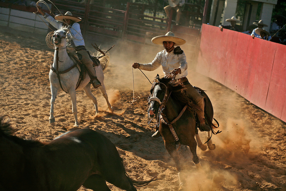 Julia Robinson photo.During the Manganas, charros race behind a wild mare keeping her position and pace steady so their teammate can rope her by the front legs.  Charros in the US do not trip the mare like their counterparts in Mexico.