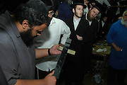 Israel, Galilee, Mount Meron, Slaughtering a cow according to Jewish customes a set of 7 images. The Shohet (Butcher) sharpening his knife