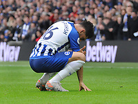 Football - 2019 / 2020 Premier League - Brighton & Hove Albion vs. AFC Bournemouth<br /> <br /> Alireza Jahanbakhsh of Brighton is overcome with emotion after scoring his first goal for the club with the fans, at The Amex.<br /> <br /> COLORSPORT/ANDREW COWIE