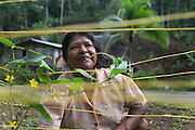Carmela Abrego Pineda, a Ngäbe indigenous woman and member of COCABO, tends her vegetable orchard. COCABO: Junquito, Almirante, Changuinola, Bocas del Toro, Panamá. September 1, 2012.