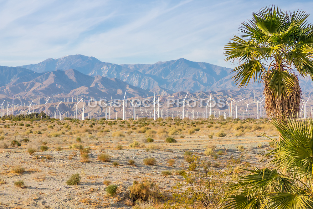 Palm Springs Windmills at San Gorgoino Mountains