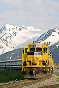 Trip of a lifetime aboard the Alaska Railroad train seen at  Portage with the Chugach Mountains