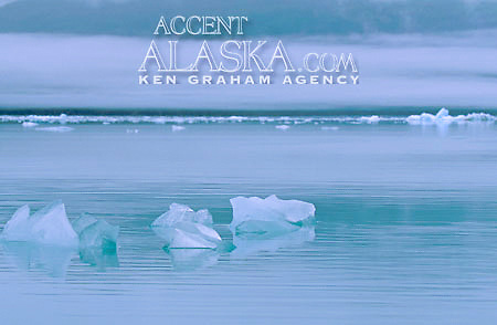 Alaska. Tidewater glacier icebergs floating in water.