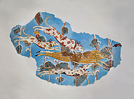 Mycenaean Fresco wall painting of a Wild Boar Hunt from the Tiryns, Greece. 14th - 13th Century BC. Athens Archaeological Museum. Grey Background .<br /> <br /> If you prefer to buy from our ALAMY PHOTO LIBRARY  Collection visit : https://www.alamy.com/portfolio/paul-williams-funkystock/mycenaean-art-artefacts.html . Type -   Athens    - into the LOWER SEARCH WITHIN GALLERY box. Refine search by adding background colour, place, museum etc<br /> <br /> Visit our MYCENAEN ART PHOTO COLLECTIONS for more photos to download  as wall art prints https://funkystock.photoshelter.com/gallery-collection/Pictures-Images-of-Ancient-Mycenaean-Art-Artefacts-Archaeology-Sites/C0000xRC5WLQcbhQ