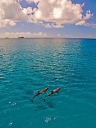 Guam Scenics