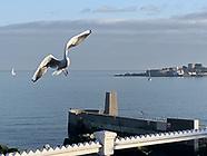 Dun Laoghaire Harbour November