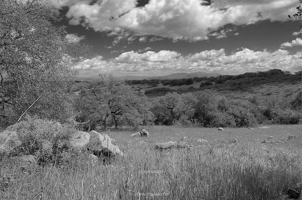 A spring day at the Santa Rosa Plateau Reserve, Riverside County, California